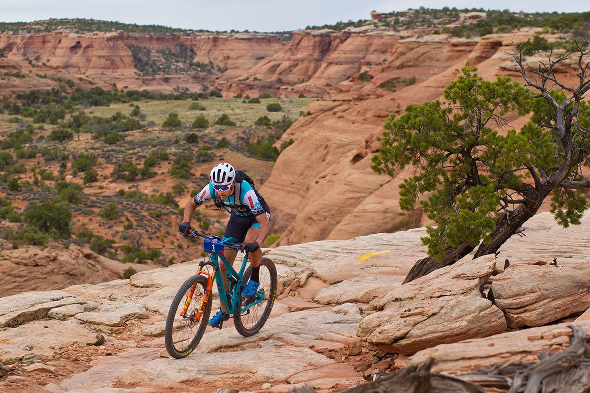 Explore 34 Step-Cast Bike Forks | FOX